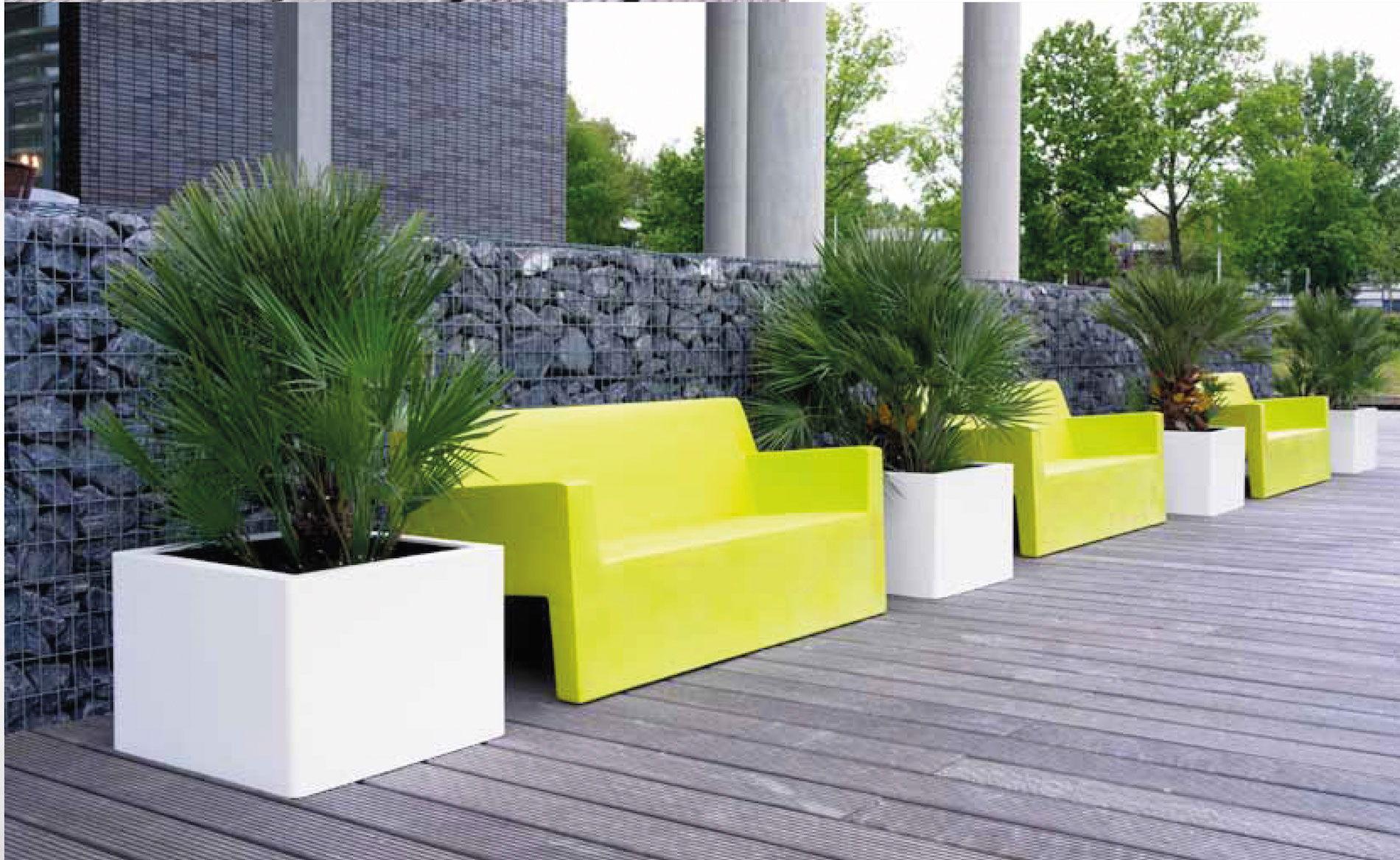 Location et entretien de plantes d 39 arbres sur marseille for Entretien jardin d une location