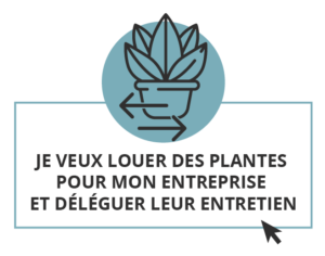 Flora Concept location entretien plantes