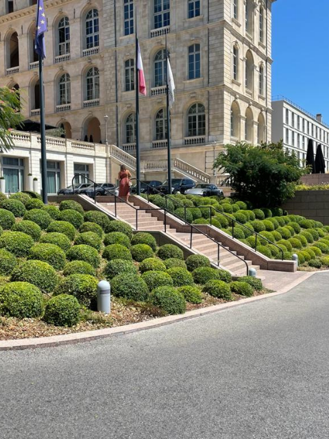 Flora Concept-IC Marseille 3