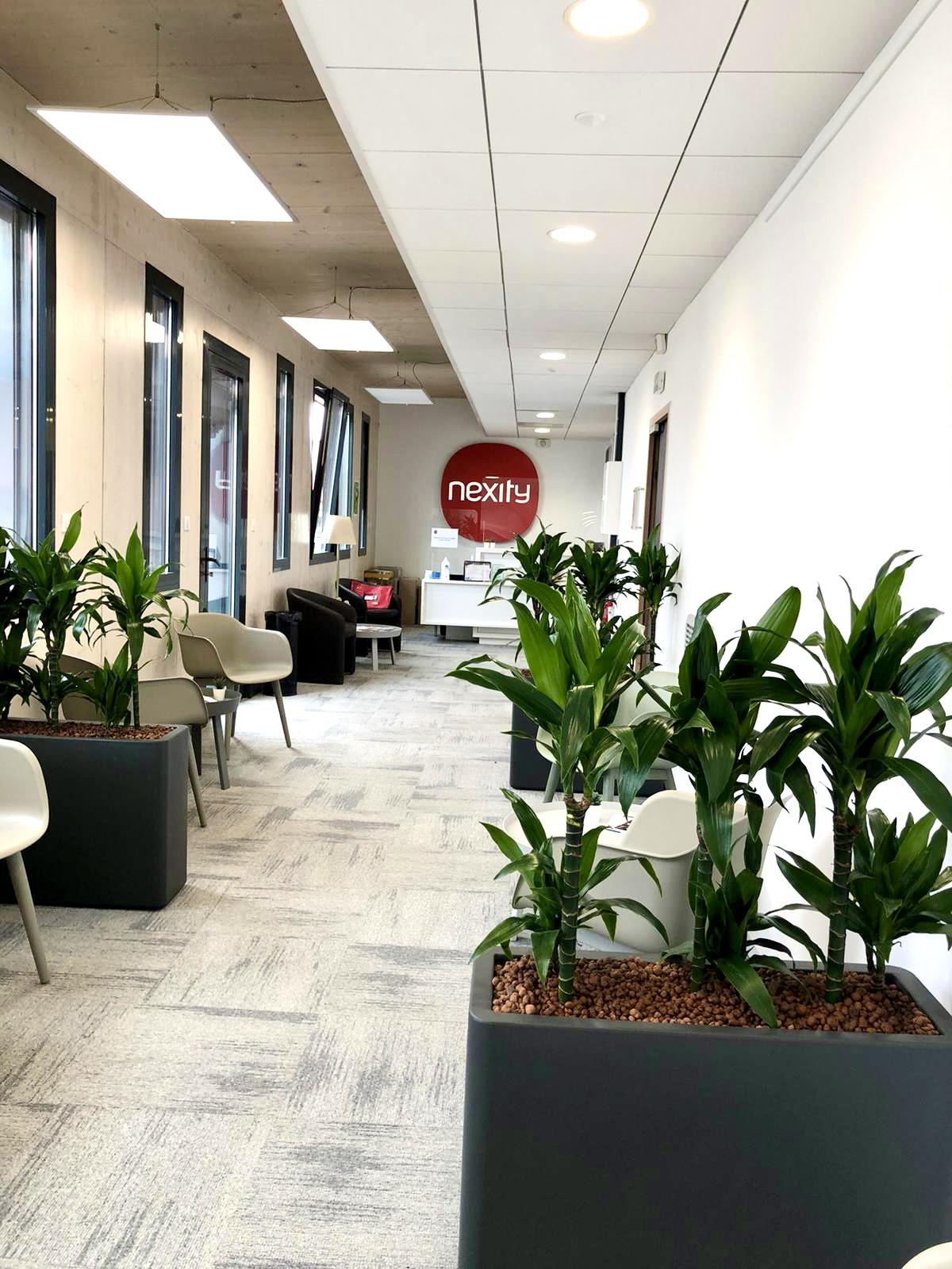 Flora Concept Nexity Marseille 3