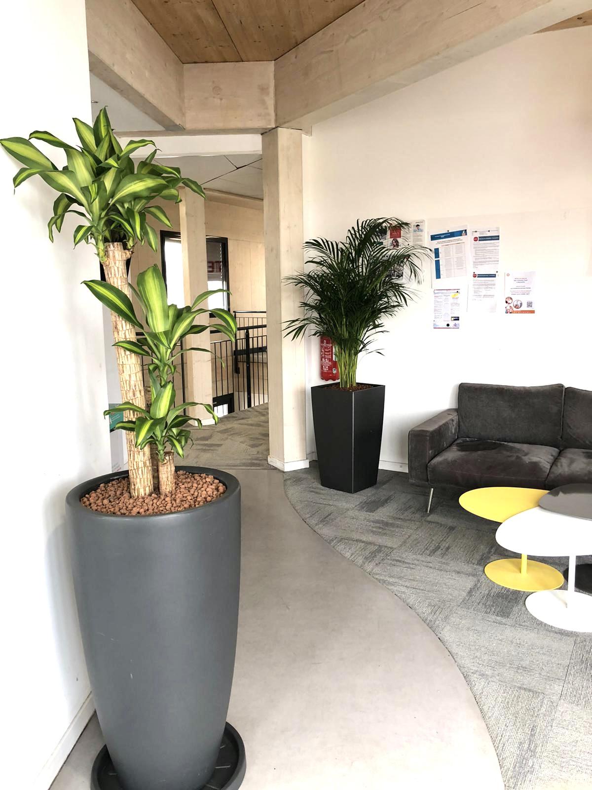 Flora Concept_Nexity Marseille 1